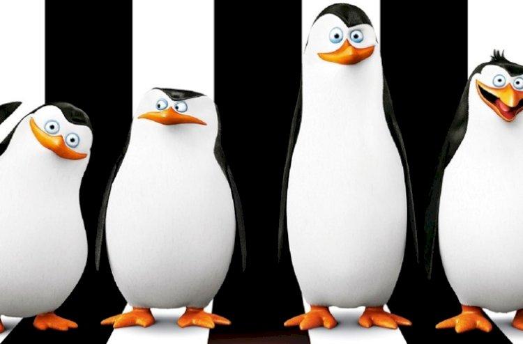 madagaskar penguenleri Türkçe izle ve indir