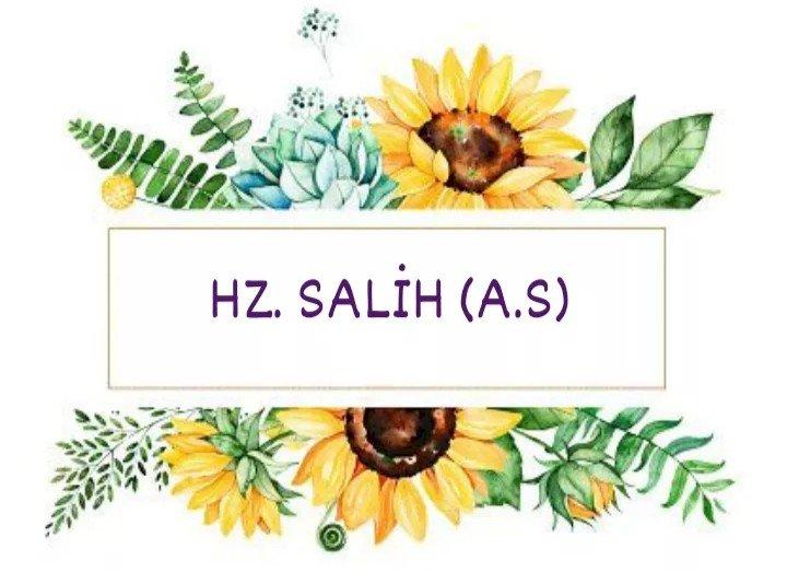 Hz. Salih (a.s) Kıssası